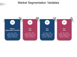 Market Segmentation Variables Ppt Powerpoint Presentation Show Example Introduction Cpb