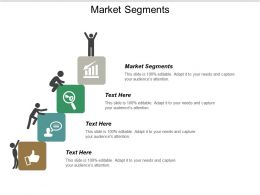 Market Segments Ppt Powerpoint Presentation Icon Layout Cpb