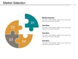 Market Selection Ppt Powerpoint Presentation File Infographics Cpb
