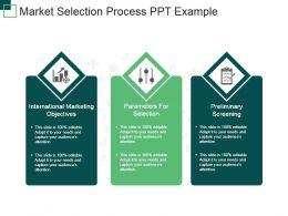 Market Selection Process Ppt Example