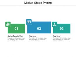 Market Share Pricing Ppt Powerpoint Presentation Gallery Format Ideas Cpb