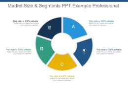 Market Size And Segments Ppt Example Professional