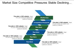 Market Size Competitive Pressures Stable Declining Domestic Sales