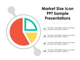 Market Size Icon Ppt Sample Presentations