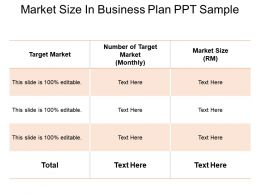 Market Size In Business Plan Ppt Sample