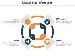 Market Size Information Ppt Powerpoint Presentation Styles Deck Cpb