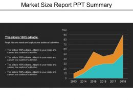 Market Size Report Ppt Summary