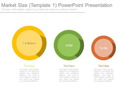 Market Size Template1 Powerpoint Presentation