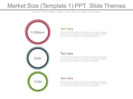 Market Size Template1 Ppt Slide Themes