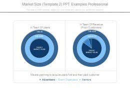 Market Size Template2 Ppt Examples Professional