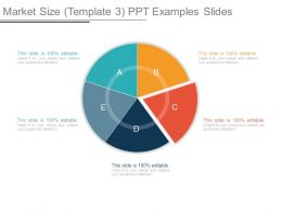 Market Size Template 3 Ppt Examples Slides