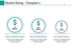 Market Sizing Ppt Styles Picture