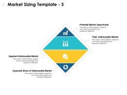 Market Sizing Segment Ppt Powerpoint Presentation Portfolio Icon