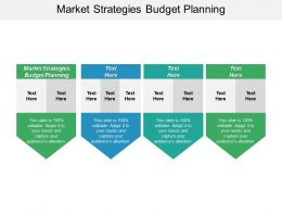 Market Strategies Budget Planning Ppt Powerpoint Presentation Gallery Graphic Images Cpb