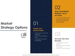 Market Strategy Options Ppt Powerpoint Presentation File Slide Download