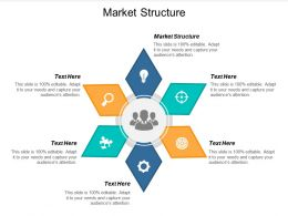 Market Structure Ppt Powerpoint Presentation Portfolio Slideshow Cpb