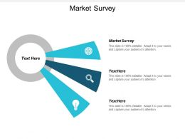 Market Survey Ppt Powerpoint Presentation Icon Guide Cpb