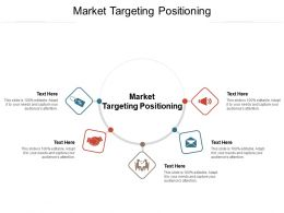 Market Targeting Positioning Ppt Powerpoint Presentation Portfolio Files Cpb