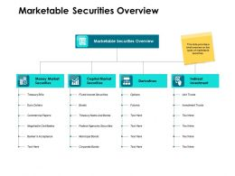 Marketable Securities Overview Ppt Powerpoint Presentation Format