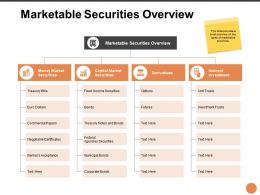 Marketable Securities Overview Ppt Powerpoint Presentation Grid