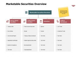 Marketable Securities Overview Ppt Powerpoint Presentation Ideas Topics