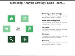 Marketing Analysis Strategy Sales Team Development Organic Investment