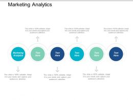 Marketing Analytics Ppt Powerpoint Presentation Styles Grid Cpb