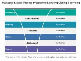 Marketing And Sales Process Prospecting Nurturing Closing And Servicing
