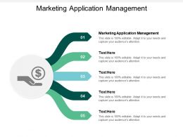 Marketing Application Management Ppt Powerpoint Presentation Summary Graphic Images Cpb