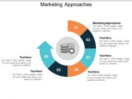 Marketing Approaches Ppt Powerpoint Presentation Styles Outline Cpb