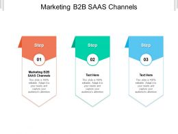 Marketing B2B SAAS Channels Ppt Powerpoint Presentation Outline Backgrounds Cpb