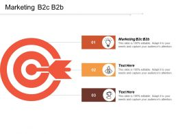 Marketing B2c B2b Ppt Powerpoint Presentation Ideas Template Cpb