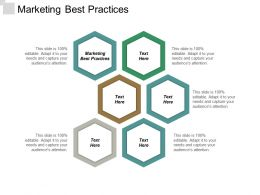 Marketing Best Practices Ppt Powerpoint Presentation Gallery Graphics Design Cpb