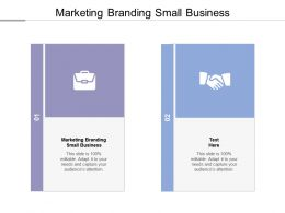 Marketing Branding Small Business Ppt Powerpoint Presentation Layouts Shapes Cpb