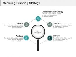 Marketing Branding Strategy Ppt Powerpoint Presentation Inspiration Clipart Images Cpb