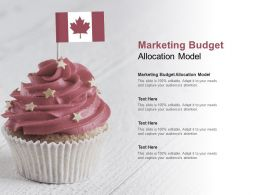 Marketing Budget Allocation Model Ppt Powerpoint Presentation Layouts Inspiration Cpb