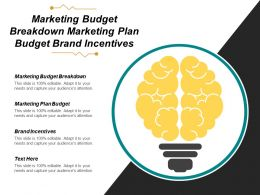 Marketing Budget Breakdown Marketing Plan Budget Brand Incentives Cpb