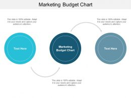 Marketing Budget Chart Ppt Powerpoint Presentation Portfolio Outline Cpb
