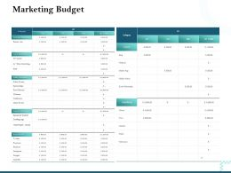 Marketing Budget Content Marketing Ppt Powerpoint Presentation Inspiration