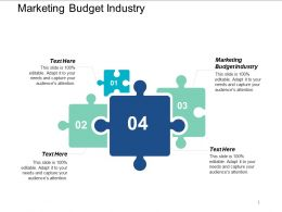Marketing Budget Industry Ppt Powerpoint Presentation Styles Icon Cpb