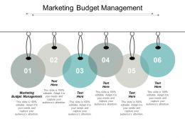 Marketing Budget Management Ppt Powerpoint Presentation Portfolio Show Cpb