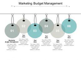 Marketing Budget Management Ppt Powerpoint Presentation Portfolio Show Cpb