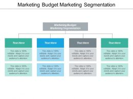 Marketing Budget Marketing Segmentation Ppt Powerpoint Presentation Portfolio Tips Cpb