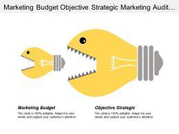Marketing Budget Objective Strategic Marketing Audit Medical Community