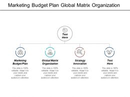 Marketing Budget Plan Global Matrix Organization Strategy Innovation Cpb