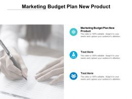 Marketing Budget Plan New Product Ppt Powerpoint Presentation Summary Cpb