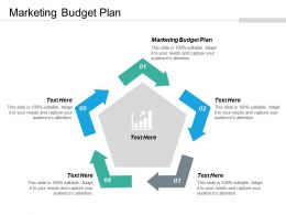 Marketing Budget Plan Ppt Powerpoint Presentation Layouts Graphics Cpb