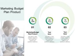 Marketing Budget Plan Product Ppt Powerpoint Presentation Gallery Slides Cpb