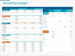 Marketing Budget Ppt Powerpoint Presentation Icon Influencers
