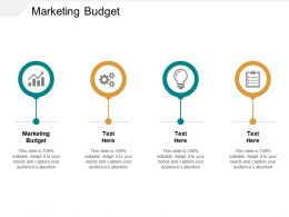 Marketing Budget Ppt Powerpoint Presentation Inspiration Demonstration Cpb
